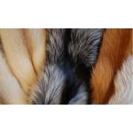 женские шапки из меха лисы